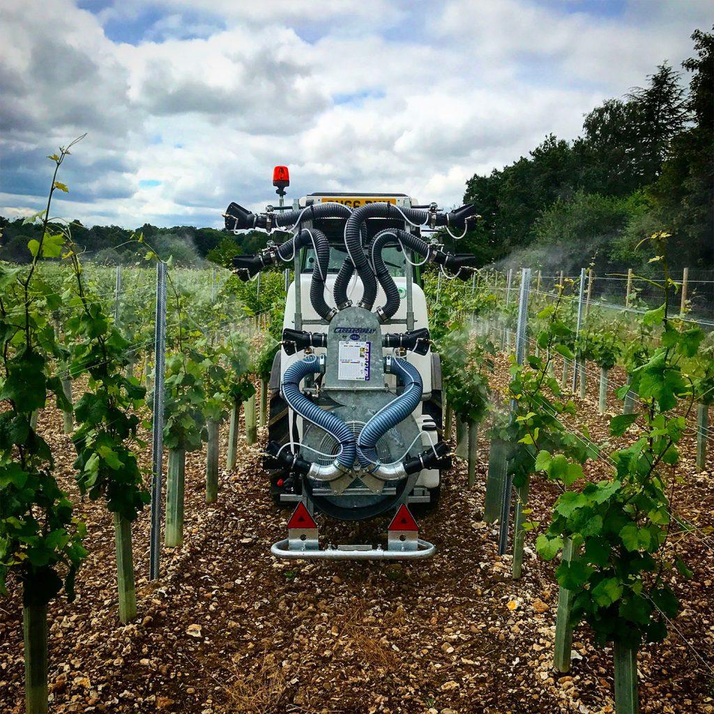 Vineyard Services
