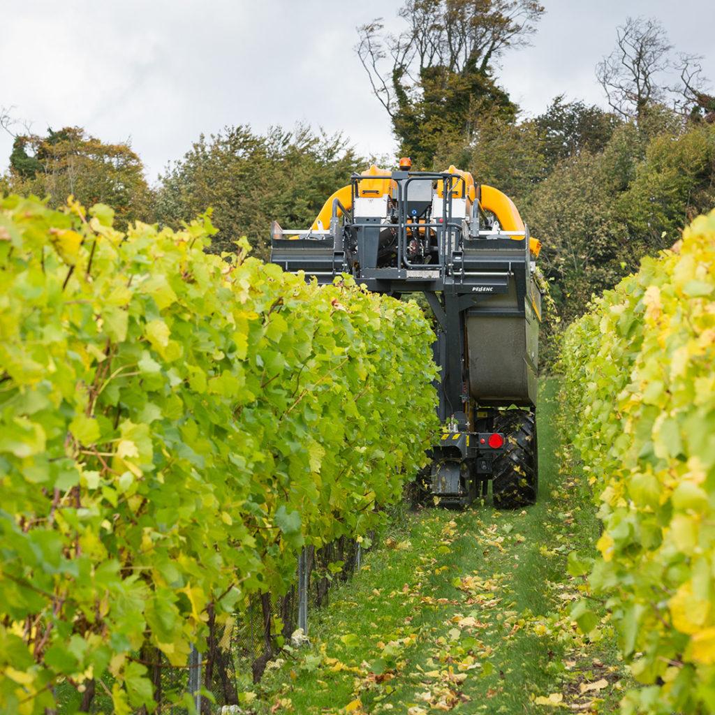 sj-barnes-vineyard-services-1