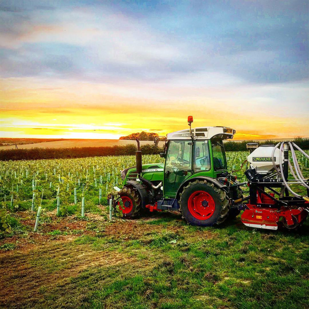 sj-barnes-vineyard-services-7