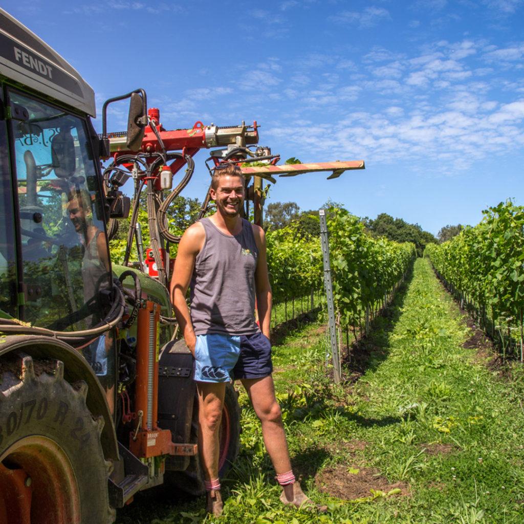 sj-barnes-vineyard-services-8