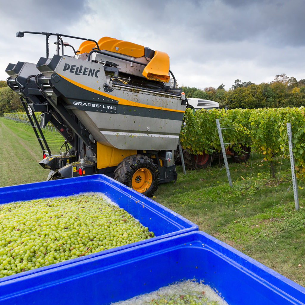 sj-barnes-vineyard-services-9